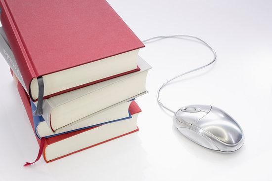 Logo for Uticaj intelektualne sposobnosti na oblikovanje i efikasnost e-učenja